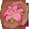 Edelweiss régénératrice